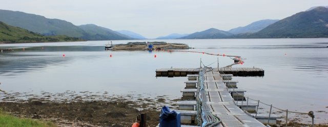 06 fish farm, Loch Linnhe, Ruth's coastal walk around the UK, Scotland