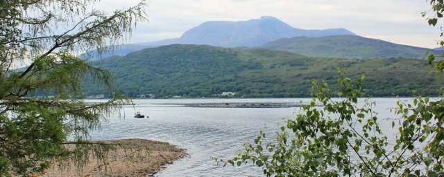 23 Ben Nevis from across Loch Linnhe, Ruth hiking to Camusnagaul Ferry