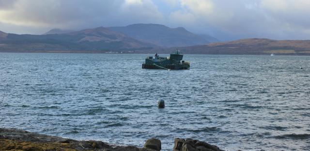05 fishing operations, Drimnin, Ruth hiking around the Morvern Peninsula