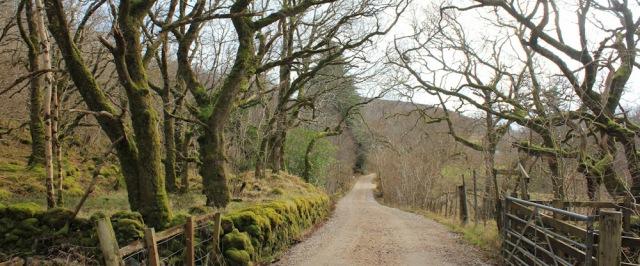 33 through Drimnin estate, Ruth hiking the coast of Morvern Peninsula
