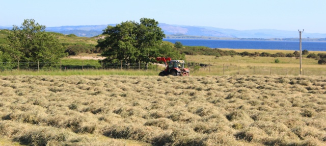 50 flat farmland at Glen Glamadale, Ruth's coastal walk around Scotland