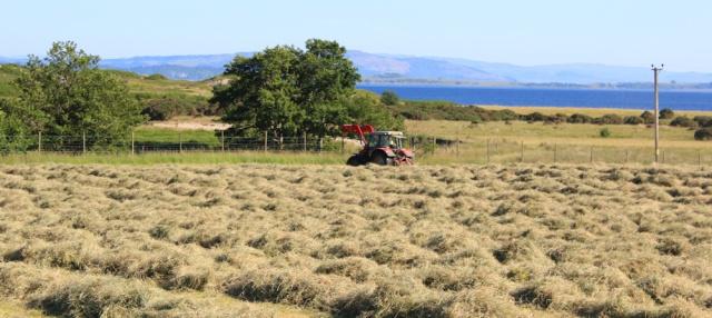 50 flat farmland at Glen Glamadale, Ruth's coastal walk around Scotland