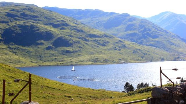 54 Loch a Choire with fish farm, Ruth's coastal walk around Scotland