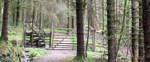05 deer fence, Ruth's coastal walk, Loch Moidart