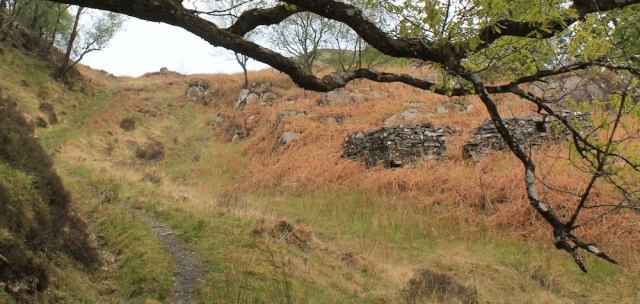 15 ruined buildings, Ruth's coastal walk, Loch Moidart