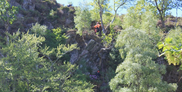 31 men in trees, Ruth walking to Arisaig, Scotland