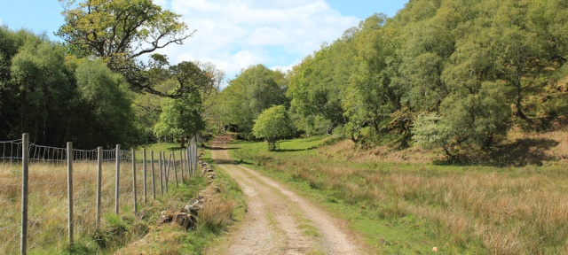42 parkland and trees, Ruth walking to Arisaig, Scotland