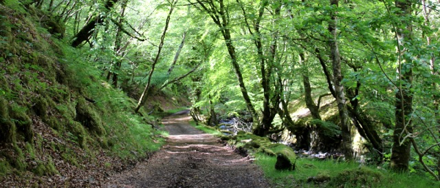 44 narrow valley and stream, Ruth walking to Arisaig, Scotland