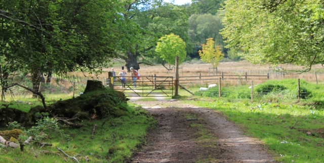 50 cow-free gate, Ruth walking to Arisaig, Scotland