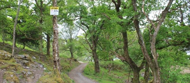 13 get shot sign, Ruth walking along the shore of Loch Morar