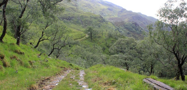 13 track down through Glen Arnisdale and trees, Ruth hiking to Corran