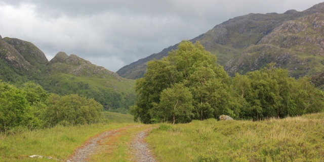 25 cow-free path, Ruth walking down Glen Arnisdale to Corran