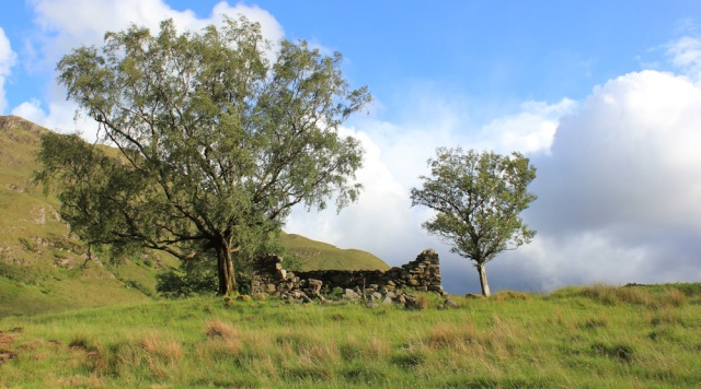 31 ruined building and sunshine, Ruth walking down Glen Arnisdale to Corran