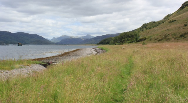 16 grassland, Loch Alsh, walking round the coast of Scotland