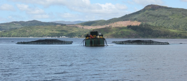 17 fish farm Loch Alsh, walking round the coast of Glenelg, Scotland