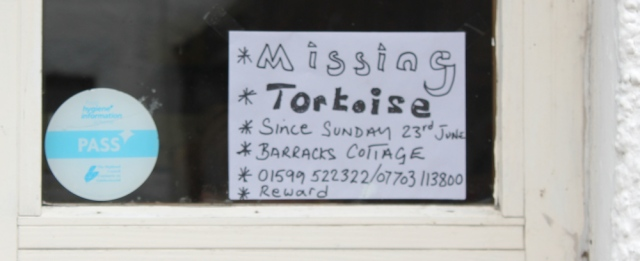 51 missing tortoise sign, Glenelg, Ruth hiking around the coast of Scotland