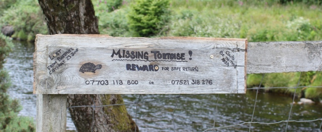 60 missing tortoise sign on bridge, footbridge over Glenmore river, Ruth's coastal walk around Glenelg peninsula, Scotland