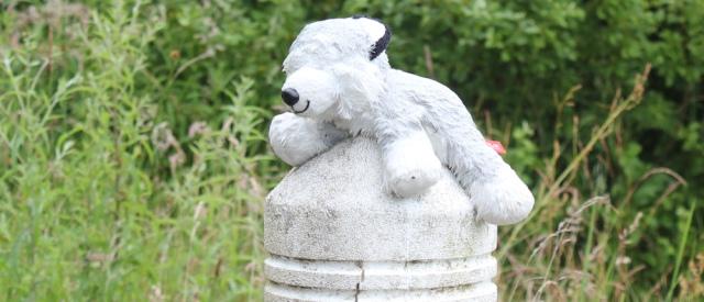 22 eyeless teddy on the post, Ruth's coastal walk around Scotland