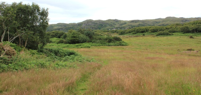 08 overgrown golf course, The Plock, Ruth's coastal walk around the Highlands of Scotland