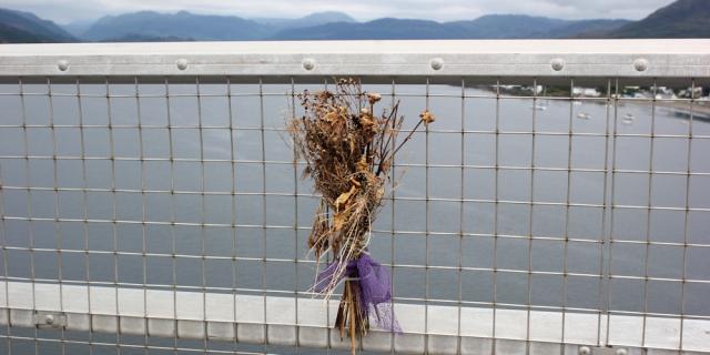 23 memorial, Ruth crossing Skye Bridge, coastal walk