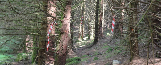 27 markers along the path to Totaig, Ruth's coastal walk around Glenelg, Scotland