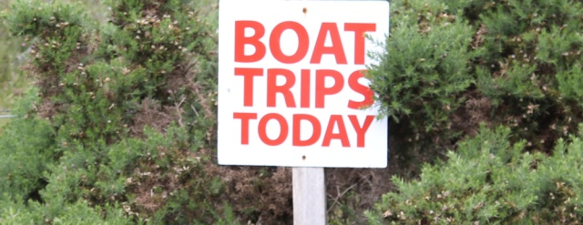 34 Boat Trips Today, Plockton, Ruth walking the coast of the Scottish Highlands