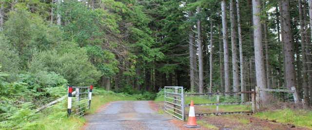 06 cattle grid, road between Ardaneaskan and Lochcarron, Ruth walking the coast of Scotland