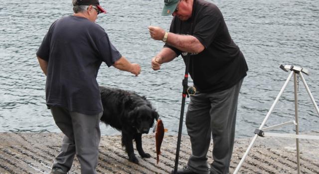 15 catching a fish, Loch Carron, Ruth's coastal walk around Scotland