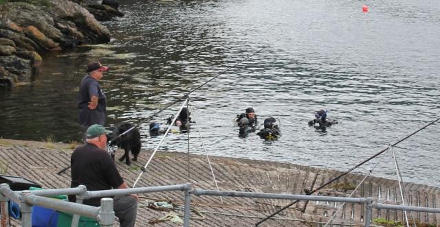 16 everyone in the water, off Strome Castle, Loch Carron, Ruth's coastal walk around Scotland
