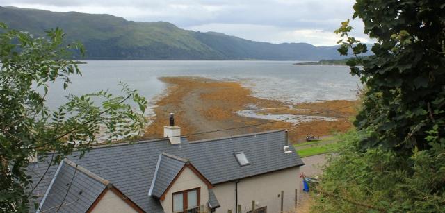 46 footpath up above road, Lochcarron, Ruth's coastal walk around the UK, Scotland