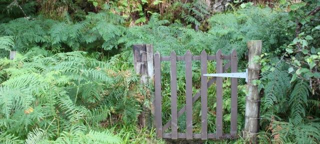 10 gate into route through trees, Reraig, Ruth walking the coast of Scotland