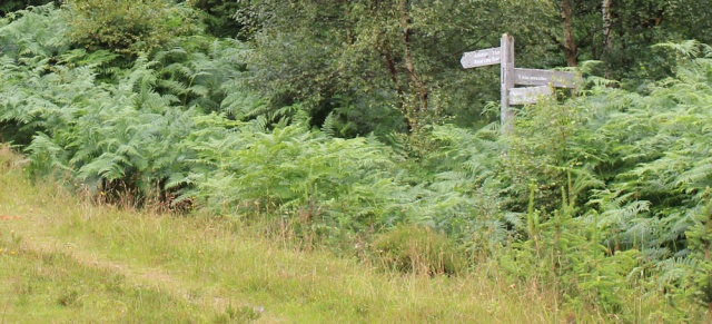 15 footpath fork for Reraig Loop, Ruth walking the coast of Scotland