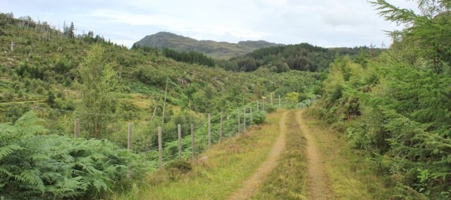 16 track on edge of Reraig forest, Ruth walking the coast of Scotland