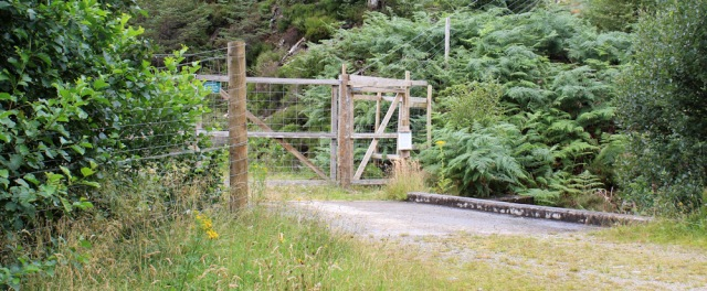 17 fork in the track and deer fence, Reraig, Ruth walking the coast of Scotland