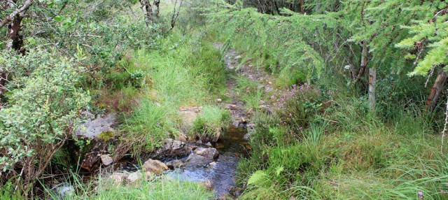 29 through a stream, Reraig, Wester Ross, Ruth's coastal walk