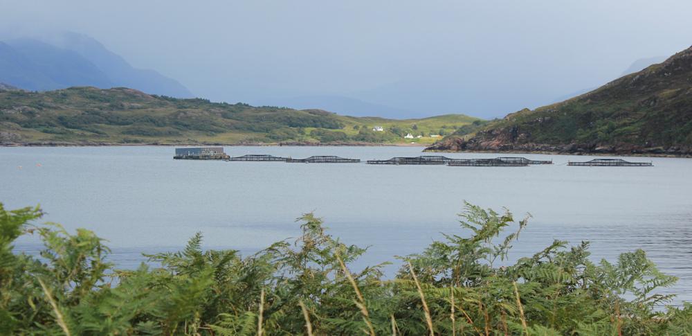 39 Salmon farm, Kenmore, Loch Torridon, Ruth hiking the north coast of Applecross, Scotland