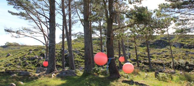 23 orange balloons at Craig Bothy, Ruth hiking around the coast of Scotland