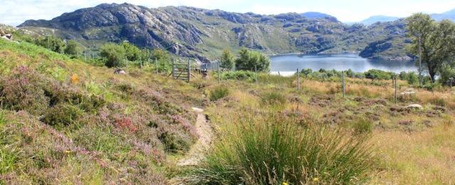26 back at the start, Ruth's coastal walk to Craig Bothy and back, Scotland